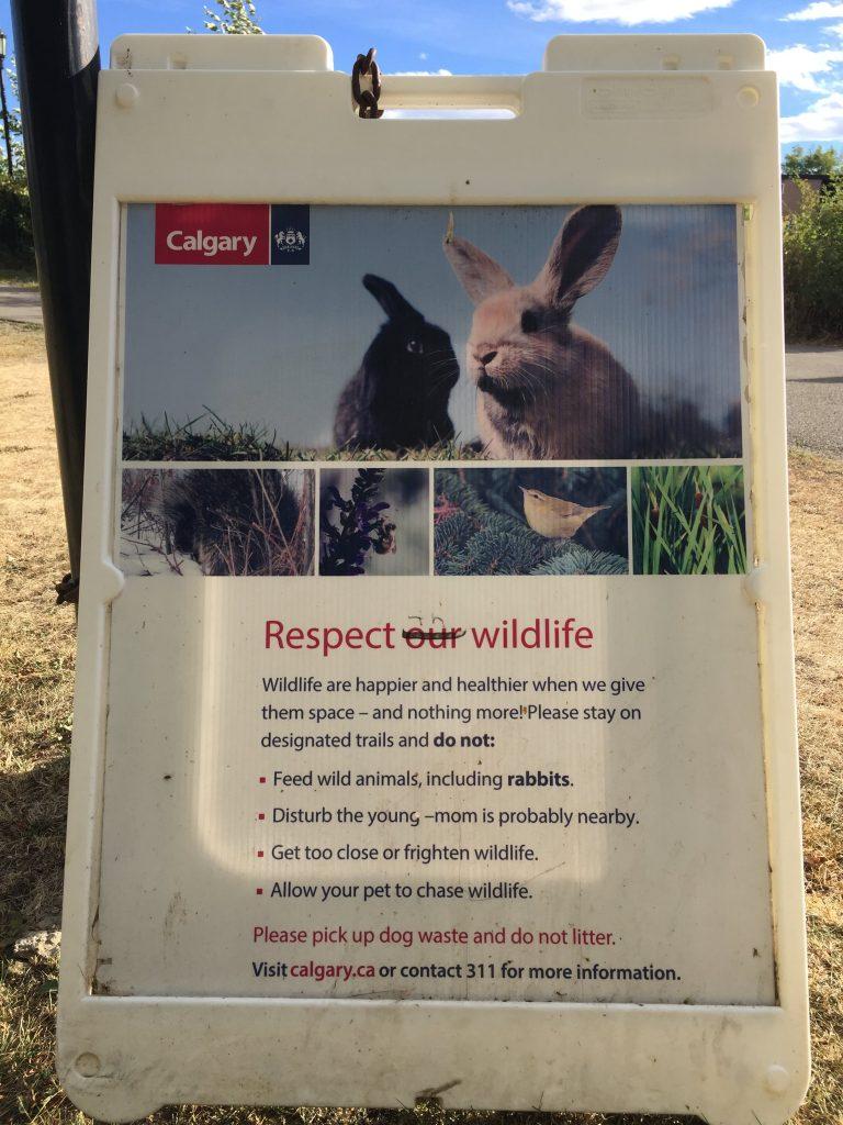 Calgary park wildlife sign